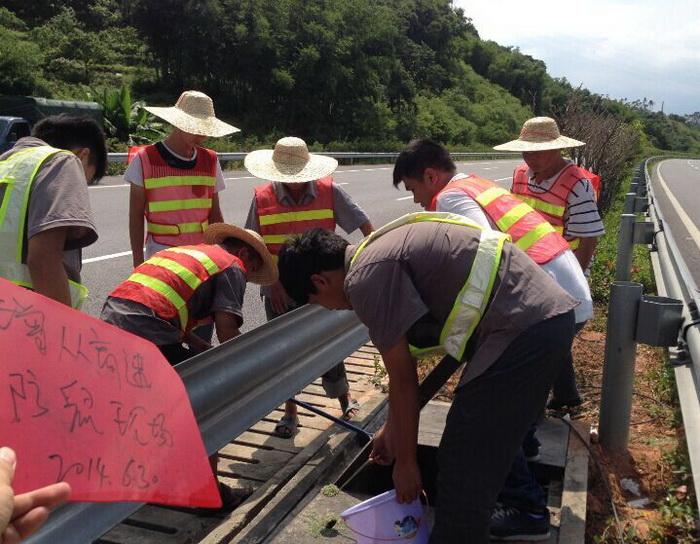 高速公路害虫防治施工现场1