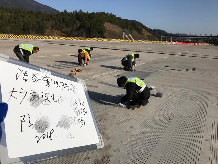 高速公路害虫防治施工现场